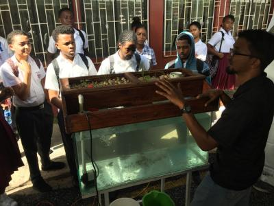 students urged to invest in aquaponics trinidad and. Black Bedroom Furniture Sets. Home Design Ideas